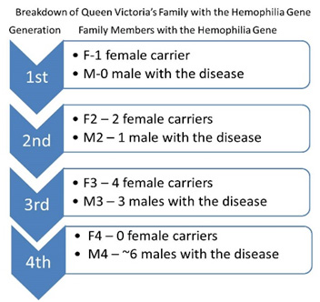 Hemophilia Bloodline Breakdown Infographic