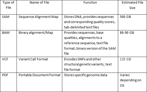 A table with file type, file name, function, and estimated file size. 1. SAM - Sequence Alignment Map, Stores DNA, provides sequences and corresponding quality scores, tab-delimited text files - 500 GB 2. BAM - Binary alignment/Map, Provides sequences, base qualities, alignments to a reference sequence, text file format, binary version of the SAM file - 80-90 GB 3. VCF - Variant Call Format, Encodes SNPs and other structural genetic variants, text file format - 125 GB 4. PDF - Portable Document Format, Stores specific genomic data - Varies depending on OS