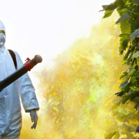 Biopesticides Reduce Risk on Human Health