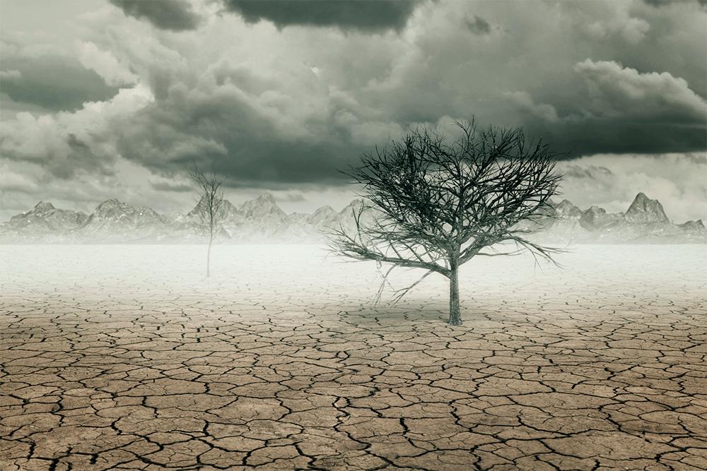 Water crisis increases global health burden.